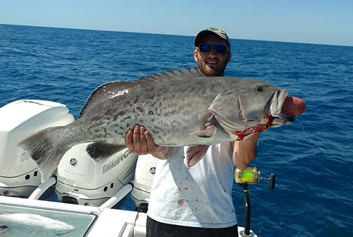 Sarasota Offshore Fishing Charters